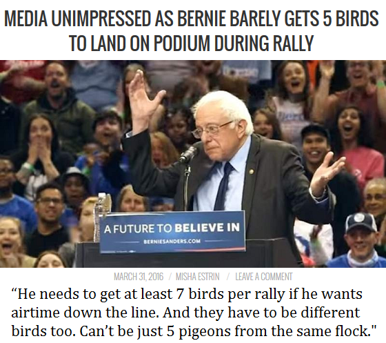 Media Unimpressed As Bernie Barely Gets 5 Birds To Land On Podium During Rally, Bernie Losing Presidency, Bad Candidate, Not fit, how to attract birds, Why birds don't like you, Media loses interest in bernie sanders, Horrible day for bernie supporters, rough night for bernie suppporters, Trump wins, Hillary is better than bernie, 5 sparrows, diffferent birds, Best bird moments of all time, worst birds of all time, Misha estrin comedy, Mishaestrin.com,